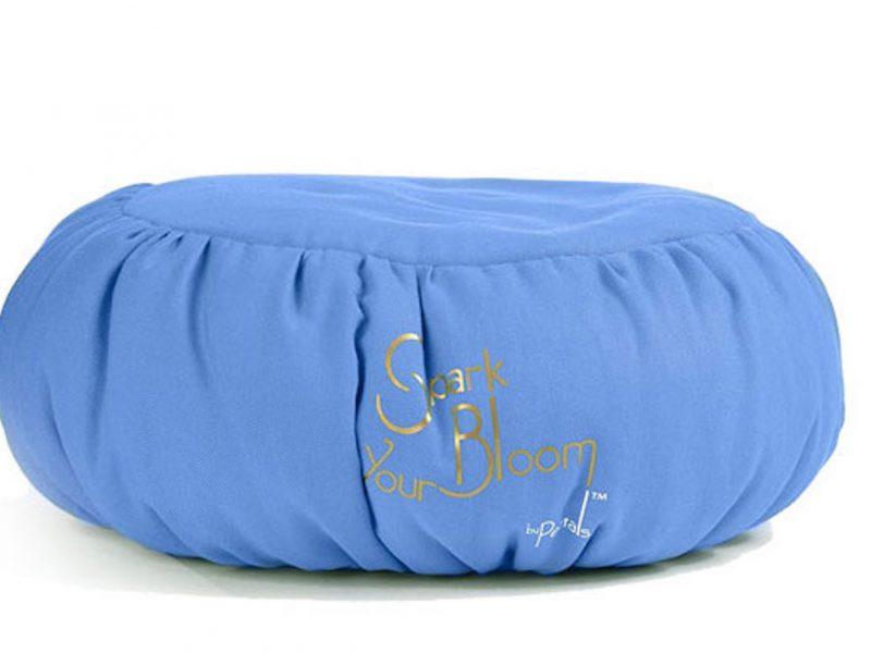 meditation cushion practice