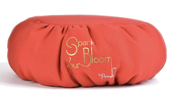 travel kit red deluxe cushion