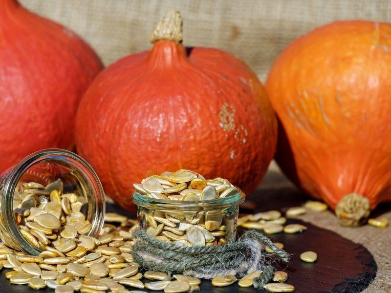pumpkin tips and tricks